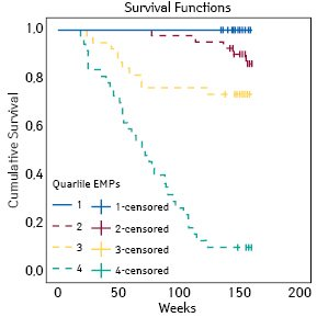 Results of Kaplan — Meier survival analysis: the cumulative survival in four patient cohorts with different Q of CD31+/annexin V